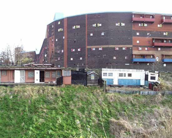 Byker Wall and pigeon crees
